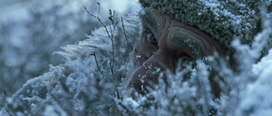http://s9.image1.org/images/2013/12/28/0/5f338c2f0c1940db7c79754ead917b96.jpg